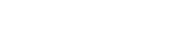 Kam.in Logo-01 сайт.png